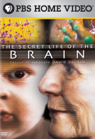 Agyunk titkos élete (The Secret Life of the Brain) online sorozat