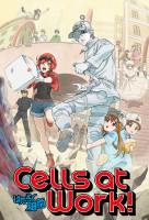 Hataraku Saibou (Cells at Work!) online sorozat