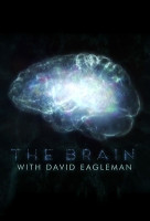 Az agy titkai (The Brain with David Eagleman) online sorozat