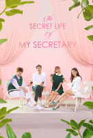 The Secret Life of My Secretary online sorozat